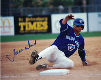 MLB Toronto Blue Jays Turner Ward 8x10 (inches) Autographed Photo Early 1990s