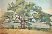 1960 Impressionist watercolor painting landscape tree signed