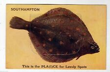 Unposted J Salmon Printed Collectable Hampshire Postcards