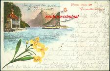 AK 1898 - Gruss vom VIERWALDSTÄTTER - Dampfer - frankiert echt gelaufen