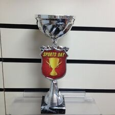 Silver Sports Day Trophy Award Cup 250mm - Free Engraving
