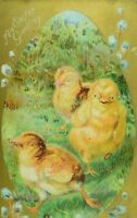 Embossed C. 1910 Lovely Easter Winsch Back Postcard 3 Baby Chicks Worm P77
