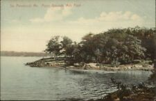 South Penobscot ME Mills Point c1910 Postcard