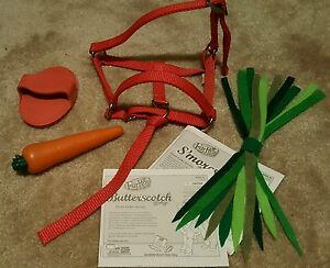 FURREAL PONY ACCESSORIES RED HALTER CARROT BRUSH etc BUTTERSCOTCH SMORES HORSE