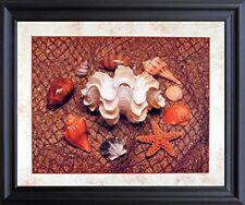 Starfish with Seashells Ocean Wall Bathroom Decor Art Print Black Framed Picture