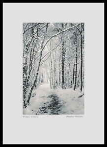 "Fine Art Print 16x10.3/4inch ""Winter Avenue"" titled and signed"