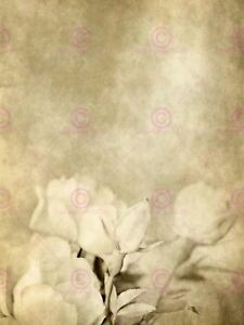 Painting Illustration Abstract Floral Rosebud Roses Design Canvas Art Print