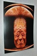 Original Poster by Zdzislaw Beksinski graphics 4#
