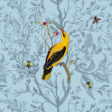 TIMOROUS BEASTIES Golden Oriole SIZE:40cm x 40cm BRAND NEW art print