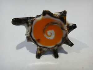 Retro Vintage Handcrafted Sea Shell Ring ~ One Of A Kind Piece