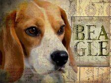BEAGLE HOUND DOG Dog Print Poster Vintage PUPPY signed Wendy Presseisen