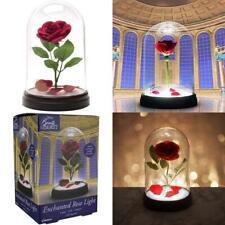die schöne und das Biest Enchanted Rose