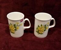 Pair of Royal Doulton Fine Bone China England Mugs Cups Yellow Flowers