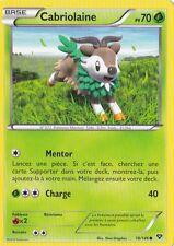 Cabriolaine - XY1 - 18/146 - Carte Pokemon Neuve Française