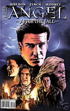 Angel After The Fall #14 comic book Season 6 Tv show series Joss Whedon