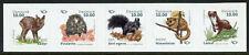 Denmark Wild Animals Stamps 2020 MNH Mammals Hedgehogs Squirrels 5v S/A Strip