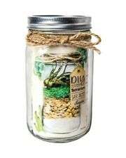 Miniature Garden Terrarium Laguna Diy Kit ~ Mason Jar with Moss, Gravel & Sand