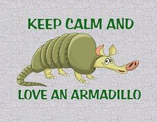 METAL MAGNET Keep Calm And Love An Armadillo Humor MAGNET