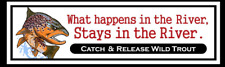 Catch and Release Brown Trout Decal Fly Fishing Sticker