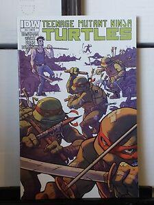 Teenage Mutant Ninja Turtles #14RI IDW