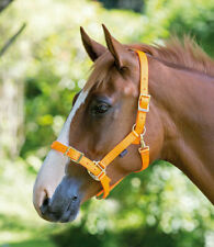 SHIRES PRO ADJUSTABLE HEADCOLLAR ASSORTED COLOURS & SIZES (410)