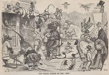 Antigüedad 1867 impresión ZOO León Elefante Jirafa Oso de mar Mono Hipopótamo Rhino jaula