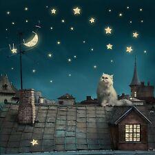 Gato Persa & estrellado en Blanco de Lujo Arte Tarjeta De Felicitación Cumpleaños amantes de gatos