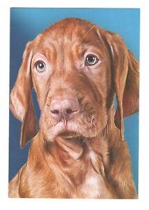 IRISH SETTER DOG ART Blank Greeting Card w/ Envelope Pet Partners G8