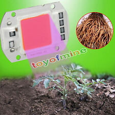 AC220V 30/50W Full Spectrum Led COB Chip Grow Light Growth Lamp for Garden Plant
