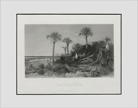 """FLORIDA 1872 Antique Engraving """"On the Coast of Florida,""""Rescued and Restored!"""