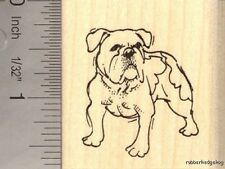 Olde English Bulldogge Rubber Stamp G13003 WM