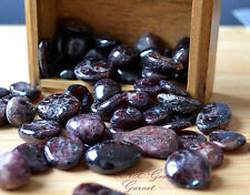 One Piece of Tumbled Gemstone Crystal Natural Garnet Large Rare Collectable