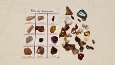 Fossils & Minerals Rocks Gemstones
