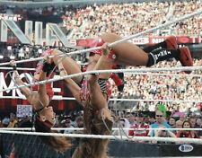 THE BELLA TWINS SIGNED SEXY AUTO WWE 11x14 PHOTO BAS COA BECKETT BRIE NIKKI  4