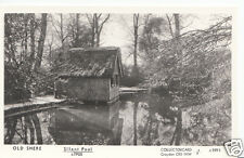 Surrey Postcard - Old Shere - The Silent Pool c1905   BH784