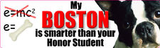 BOSTON TERRIER SMARTER THAN YOUR HONOR STUDENT Sticker