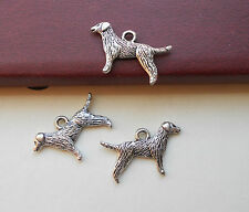 10 Labrador Type Dog Charms Pet Breed Service Animal Jewelry Supplies 23mm