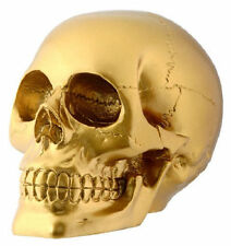 Gold Skull Statue Sculpture Human Head Figure Home Decor