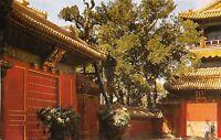 br25758 chen guang men china LIPSA DELCAMPE