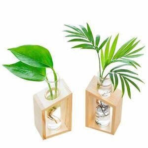 Wooden Glass Tube Vase Cute Hydroponic Flower Plant Pot Garden Home Decoration