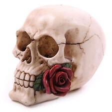 ROSE dal mondo dei Morti Cranio Decorazione Ornamento GOTHIC Goth Vamp