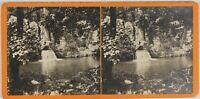 Paesaggio Cascade Foto Stereo L9n1 Vintage Analogica