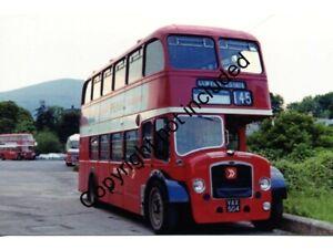 BUS PHOTO: RED & WHITE BRISTOL LD L459 VAX504