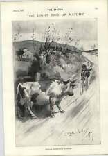 1897 Cecil Doodle Doo facilis Aldin Gallo un descenso Averno