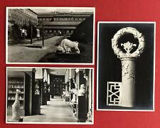 3 x Foto AK MEISSEN um 1935 Staatliche Porzellan Manufaktur Schauhalle ( 80071