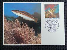 FRANCE MK 1978 TROPICAL FISH CORAL PISCES FISCHE CARTE MAXIMUM CARD MC CM c3225