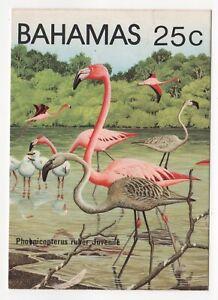 1982 BAHAMAS Cover CARIBBEAN FLAMINGO SG620 Maxi Card 25c Postcard UNUSED Birds