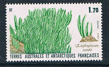 French Antarctic/TAAF 1988 Elephant Grass SG 232 MNH