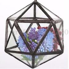 Irregular Glass Geometric Terrarium Box Tabletop Succulent Plant Planter HOT