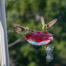 Bird Feeder, Droll Yankees Window Ruby Sipper Hummingbird Feeder / Purple Base